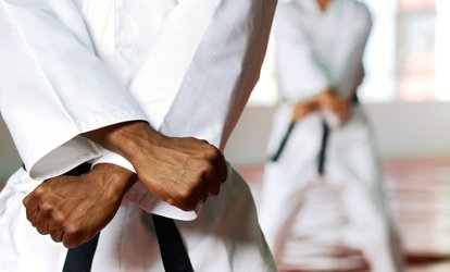 image for 10 or 20 Martial Arts <strong>Classes</strong> with a Private Session and Uniform at Black Belt Karate Studio (Up to 79% Off)