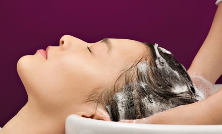 Salon Package with Optional Color Treatments at Abstract Salon and Spa (Up to 55% Off). Four Options Available.