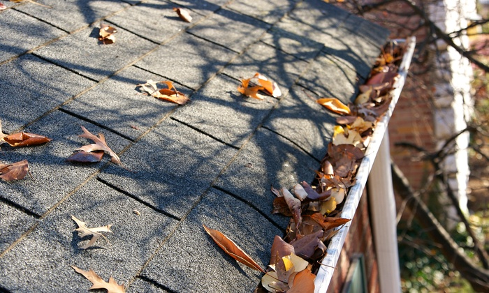 All County Masonry - North Jersey: $99 for Gutter Cleaning and Inspection from All County Masonry ($250 Value)