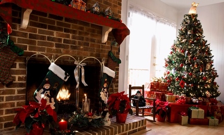 $18 for $35 Worth of Christmas Trees, Wreaths, Poinsettias & Gifts at Cahoon Nursery & Garden Center