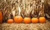 Paris Irons Farm - Paris Irons Farm: Scarecrow October Festivities for Two or Four at Paris Irons Farm (Up to 45% Off)