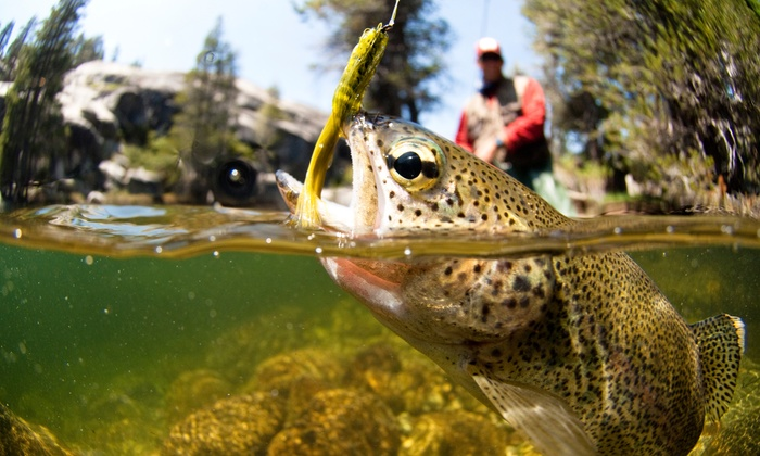 Sierra Fly Fishing Adventures - Lodi: Half- or Full-Day Fly-Fishing Trip for Up to Two from Sierra Fly Fishing Adventures (Up to 54% Off)