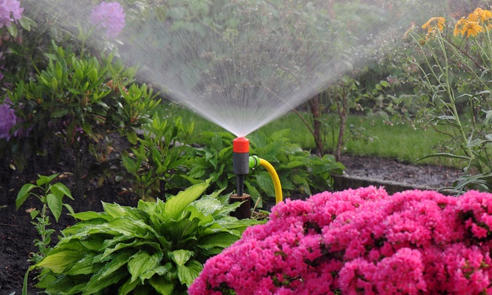 Texas Landscape Experts - Fort Worth: $29 for a Sprinkler Tune-Up with Up to Five Nozzle Replacements at Texas Landscape Experts ($99 Value)