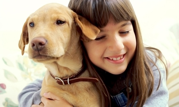 Lucky's Day Out - Houston: Dog-Sitting Service from Lucky's Day Out (Up to 52% Off). Three Options Available.