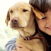 Up to 48% Off the Ottawa Pet Expo
