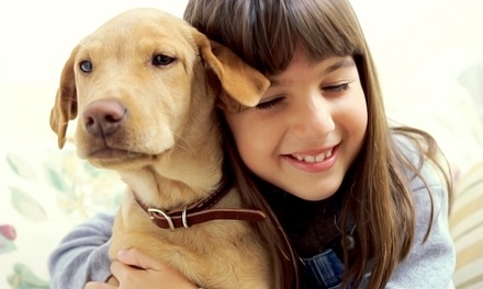 Admission for Two or Four to The Ottawa Pet Expo on November 8–9 (Up to 48% Off)