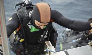 L'Atelier de la Mer: Formation de plongeur Scuba diver (à partir de 10 ans) à 99,99 € à l'Atelier de la Mer