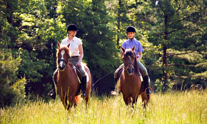 Breezy Meadow Equestrian Centre at Tri-Brook Equestrian Center - Plumsted: Trail Rides and Picnics for Two or Four, or Riding Lessons at Breezy Meadow Equestrian Centre (58% Off)