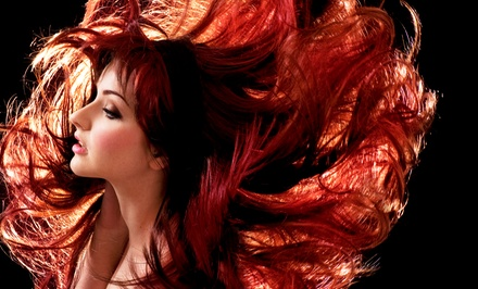 Haircut Package with Optional Color or Partial or Full Highlights at Hairology (Up to 59% Off)