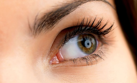 Full Set of Mink Eyelash Extensions with Optional Two-Week Fill at The Lash Lounge (50% Off)
