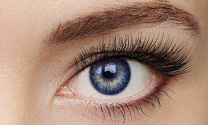 Lash'd X Taye: Faux Mink Eyelash Extensions with Options for One or Three Touch-Ups at Lash'd X Taye (Up to 61% Off)