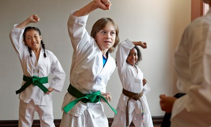$26 for Five <strong>Martial-Arts</strong> Classes with Uniform and Belt at <strong>Martial Arts</strong> Professional Schools($149 Value)