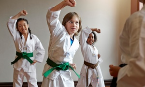 Bobby Lawrence Karate: 90-Minute Party for Up to 25 Kids with Cake and Optional Pizza at Bobby Lawrence Karate (Up to 53% Off)