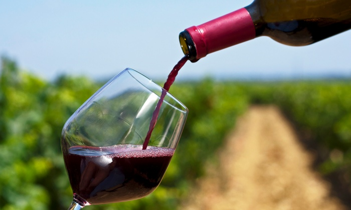 Fogline Vineyards - Fulton: Wine Tasting for Two or Four With Credit Toward Wine Shop Purchases at Fogline Vineyards (Up to 52% Off)