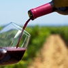 Up to 52% Off Wine Tasting