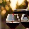 Dégustation de vin à domicile