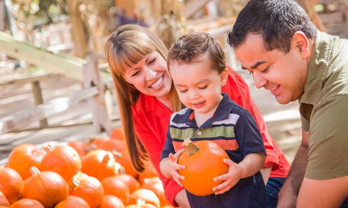PumpkinFest Toronto - Downsview Park: Unlimited Kids' Ride Passes to PumpkinFest Toronto (Up to Half Off)