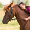 A la découverte des poneys