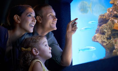 image for Admission for Two, Four, or Six to Flint RiverQuarium (Up to 50% Off)