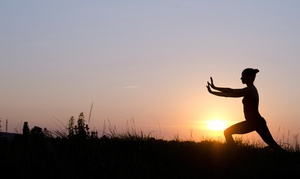Naturally Organic Center: 10- or 20-Class Punch Card for Tai Chi or Qi Gong at Naturally Organic Center (Up to 82% Off)