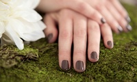 GROUPON: 50% Off Paraffin Shellac Manicure Revo Nails & Spa