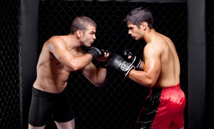 UFC Gym San Bruno: 6 or 12 Boxing, Kickboxing, or Mixed Martial Arts Classes at UFC Gym San Bruno (Up to 84% Off)