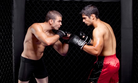 6 or 12 Boxing, Kickboxing, or Mixed Martial Arts Classes at UFC Gym San Bruno (Up to 84% Off)