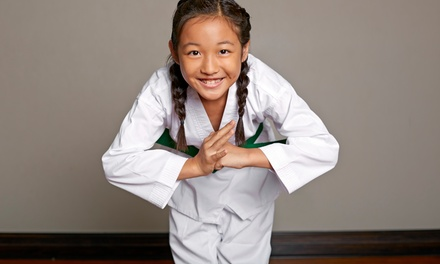 10 or 20 Martial-Arts Classes with Initiation and Uniform at Takai Mine Karate/Tae Kwon Do (Up to 80% Off)