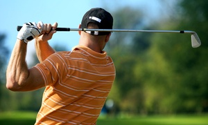 The Golf Academy/LA: Golf-Swing Evaluation and Instruction at The Golf Academy/LA (Up to 72% Off). Four Options Available.