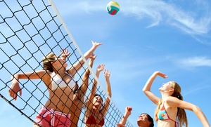 Luau Indianapolis Volleyball and Cornhole Tournament: Team Entry to the Luau Indianapolis Volleyball and Cornhole Tournament (Up to 57% Off). Four Options Available.