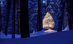 Customized Tours: $85 for One Ticket to the Leavenworth Christmas Lights Festival from Customized Tours ($130 Value)
