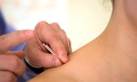 Visita specialistica e 3 o 5 sedute di agopuntura (sconto fino a 76%)