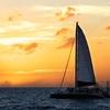 Up to 39% Off from Nauti Cat Cruises