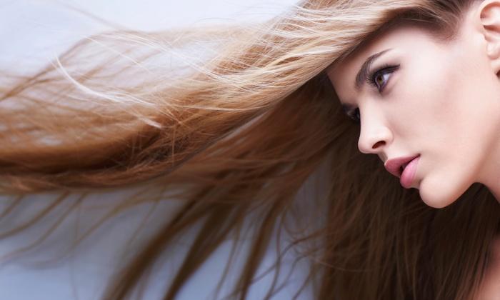 Aria Hair & Beauty - Aria Hair & Beauty an Aveda Concept Salon: Haircut and Aveda Color Options  at Aria Hair & Beauty (Up to 55% Off). Four Options Available.