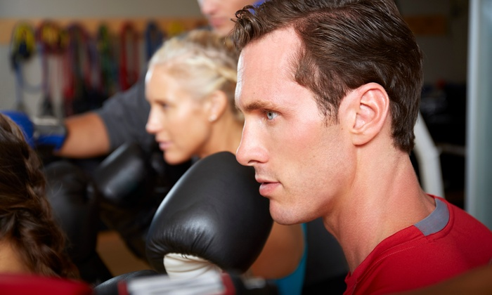 Wolfpack Fitness Boxing - Carrollwood: Eight Weeks of Membership and Unlimited Fitness Classes at Wolfpack Fitness Boxing  (71% Off)
