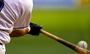 Swing Institute: One or Three 60-Minute Batting Lessons with Video Analysis at Swing Institute (Up to 77% Off)