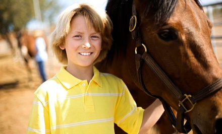 $318 for One Week of Horseback-Riding Camp for One Kid at C2 It, LLC ($579 Value)