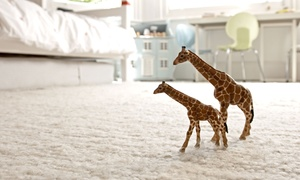 Floor Trends: Carpet and Padding from Floor Trends (Up to 52% Off). Two Options Available.