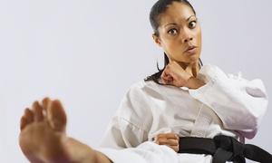 Master Pierce's Taekwondo: $20 for One Month of Unlimited Taekwondo Classes at Master Pierce's Taekwondo ($110 Value)