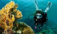 Bautismo de buceo para 1 persona por 29,95 € o curso PADI Scuba Diver de iniciación para 1 o 2 desde 120 € en Scubazul