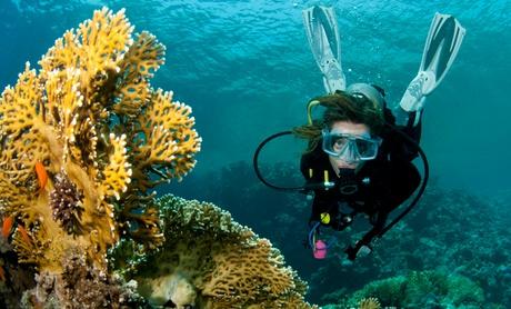 Bautismo de buceo para 1 o 2 personas o Curso ACUC Scuba Diver de iniciación al buceo desde 29,95 € con CBS GlupGlup
