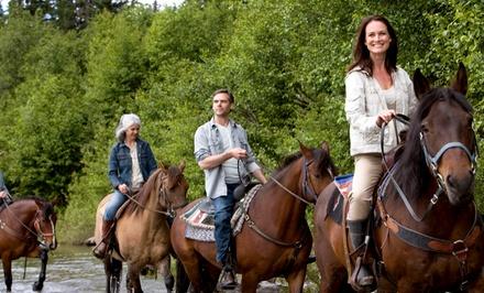 Paseo a caballo para dos personas por 24 €, con comida por 39 € o paseo en pony para un ñiño por 8 €