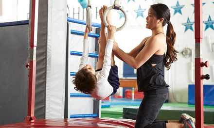 4 Weeks of Kids Gymnastics Classes: 1 Child Aged 34 $19 or 2 Children Aged 58 $29 at Aspire Gymnastics Academy