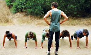Fit Body Boot Camp: 4 or 8 Weeks of Boot Camp at Fit Body Boot Camp (Up to 70% Off)