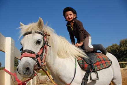 1, 2 ou 3 cours collectif d1h de poney ou cheval pour enfants dès 9,90 € à La Ferme Déliot