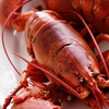 Up to 50% Off Seafood at Anchors Seafood & Ale House