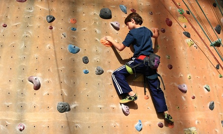 Two- or Four-Hour Private Rock-Climbing Wall and Room Rental at Climbing at The Crux at Camptown (Up to 52% Off)