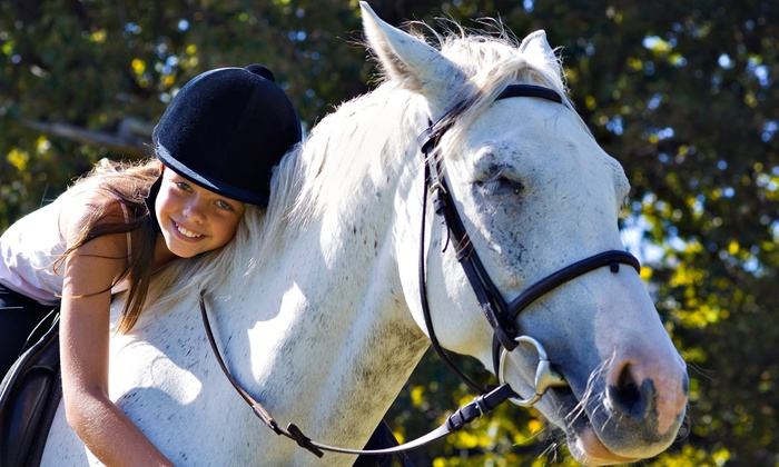 Blue Point Stables - Dogwood Shores: Three or Five 60-Minute Horseback-Riding Lessons at Blue Point Stables (Up to 56% Off)
