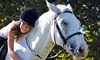 Creekwood Riding Academy - Gastonia: Two or Four 45-Minute Private Horseback-Riding Lessons at Creekwood Riding Academy (Up to 53% Off)