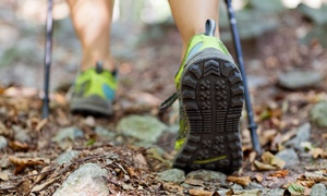 Not a Clue Adventures: Three-Hour Guided Nature Hike for Two or Four from Not a Clue Adventures (Up to 64% Off)